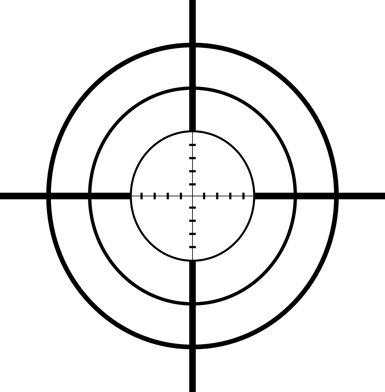 crosshair of rifle scope
