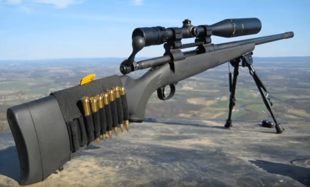 300 winchester magnun with scope