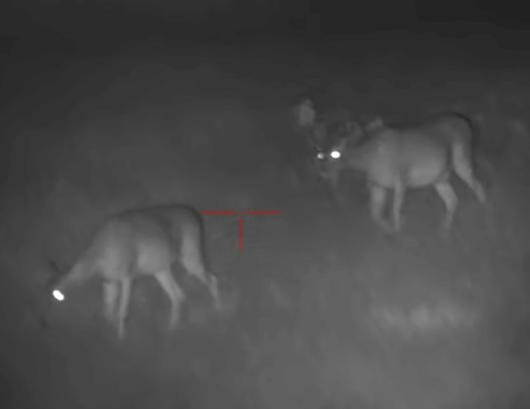 best night vision scope image
